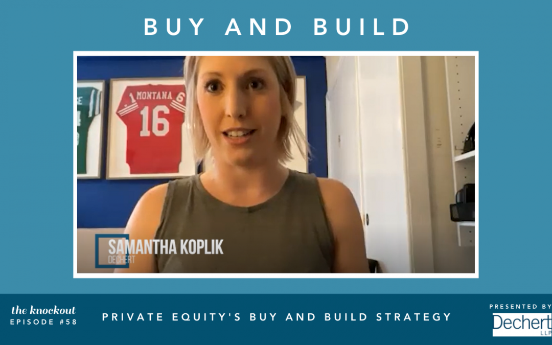 Private Equity's Buy and Build Strategy
